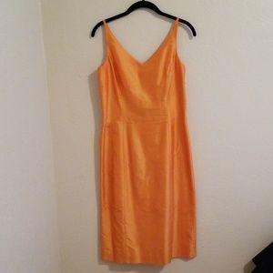 Ann Taylor Sleeveless V-Neck Dress 🐝